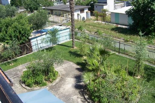 Soluzione Indipendente in vendita a Monsampolo del Tronto, 11 locali, Trattative riservate | Cambio Casa.it