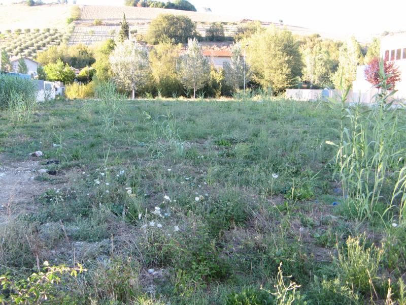 Terreno Edificabile Comm.le/Ind.le in vendita a Ripatransone, 9999 locali, zona Località: ValTesino, Trattative riservate | Cambio Casa.it