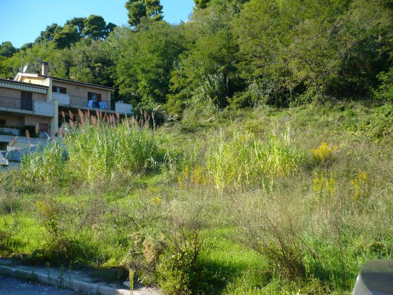 Terreno Edificabile Residenziale in vendita a Acquaviva Picena, 9999 locali, zona Località: Panoramica, Trattative riservate | CambioCasa.it