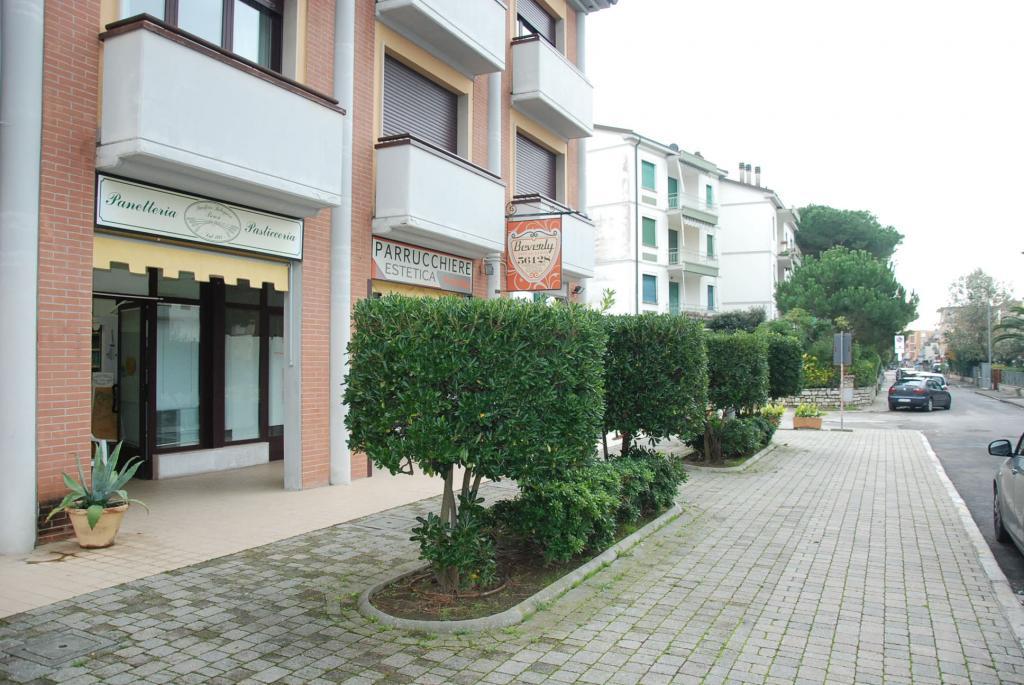 Negozio / Locale in affitto a Pisa, 9999 locali, zona Zona: Tirrenia, prezzo € 750 | CambioCasa.it