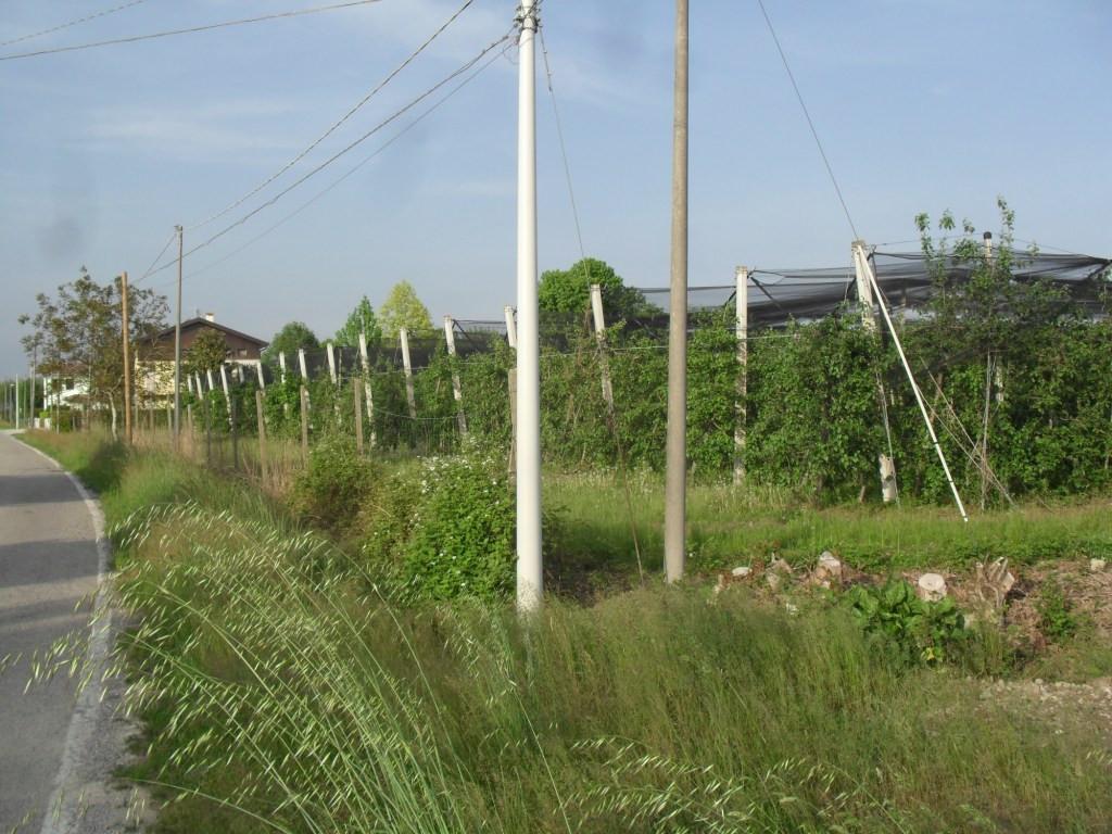 Terreno Agricolo in vendita a Brugnera, 9999 locali, prezzo € 130.000 | Cambio Casa.it