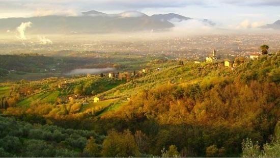 Terreno Edificabile Residenziale in vendita a Lucca, 9999 locali, zona Località: MonteSanQuirico, prezzo € 240.000   Cambio Casa.it