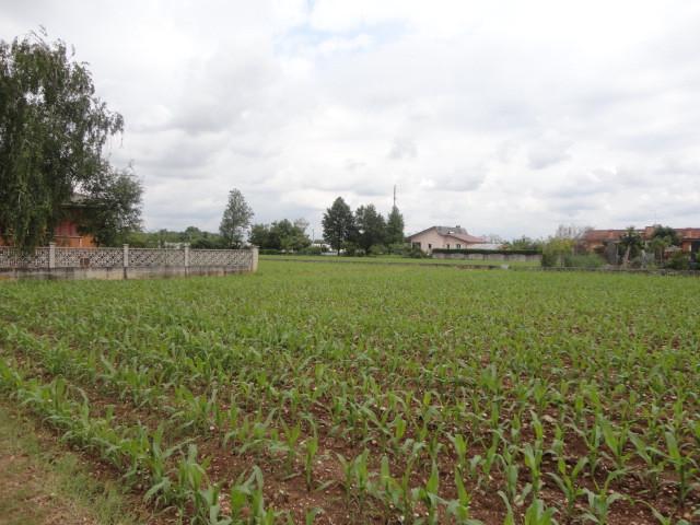 Terreno Agricolo in vendita a San Vito al Torre, 9999 locali, prezzo € 190.000 | Cambio Casa.it