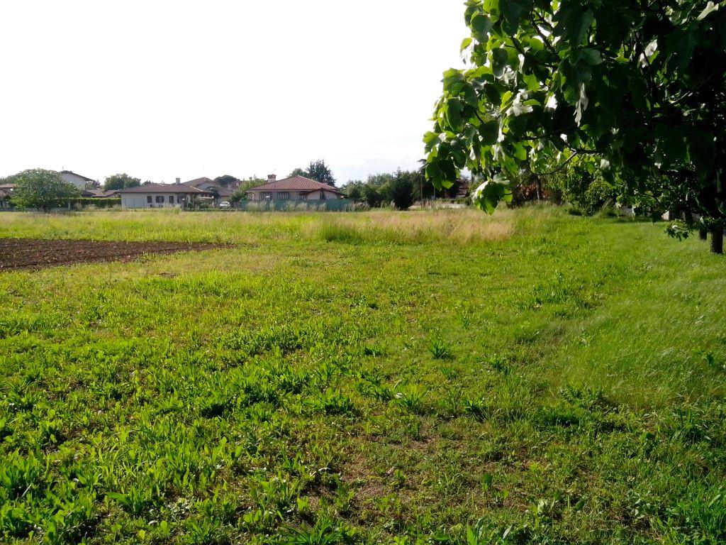 Terreno Edificabile Residenziale in vendita a Santa Maria La Longa, 9999 locali, prezzo € 50.000 | Cambio Casa.it