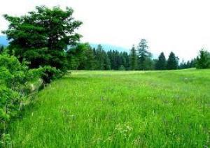 Terreno edificabile<br>in Vendita a Pradamano
