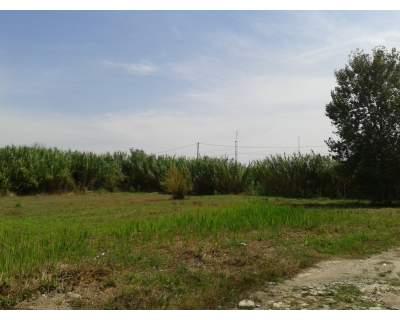 Terreno Agricolo in Vendita a Giugliano in Campania