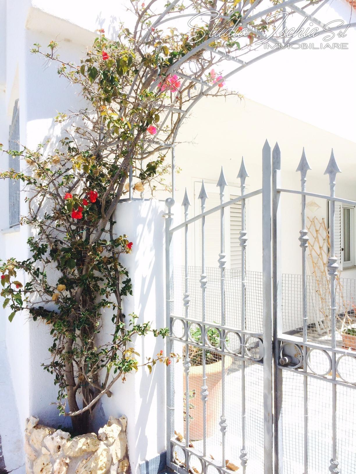Appartamento in vendita a Forio, 4 locali, zona Zona: Panza, prezzo € 430.000 | CambioCasa.it