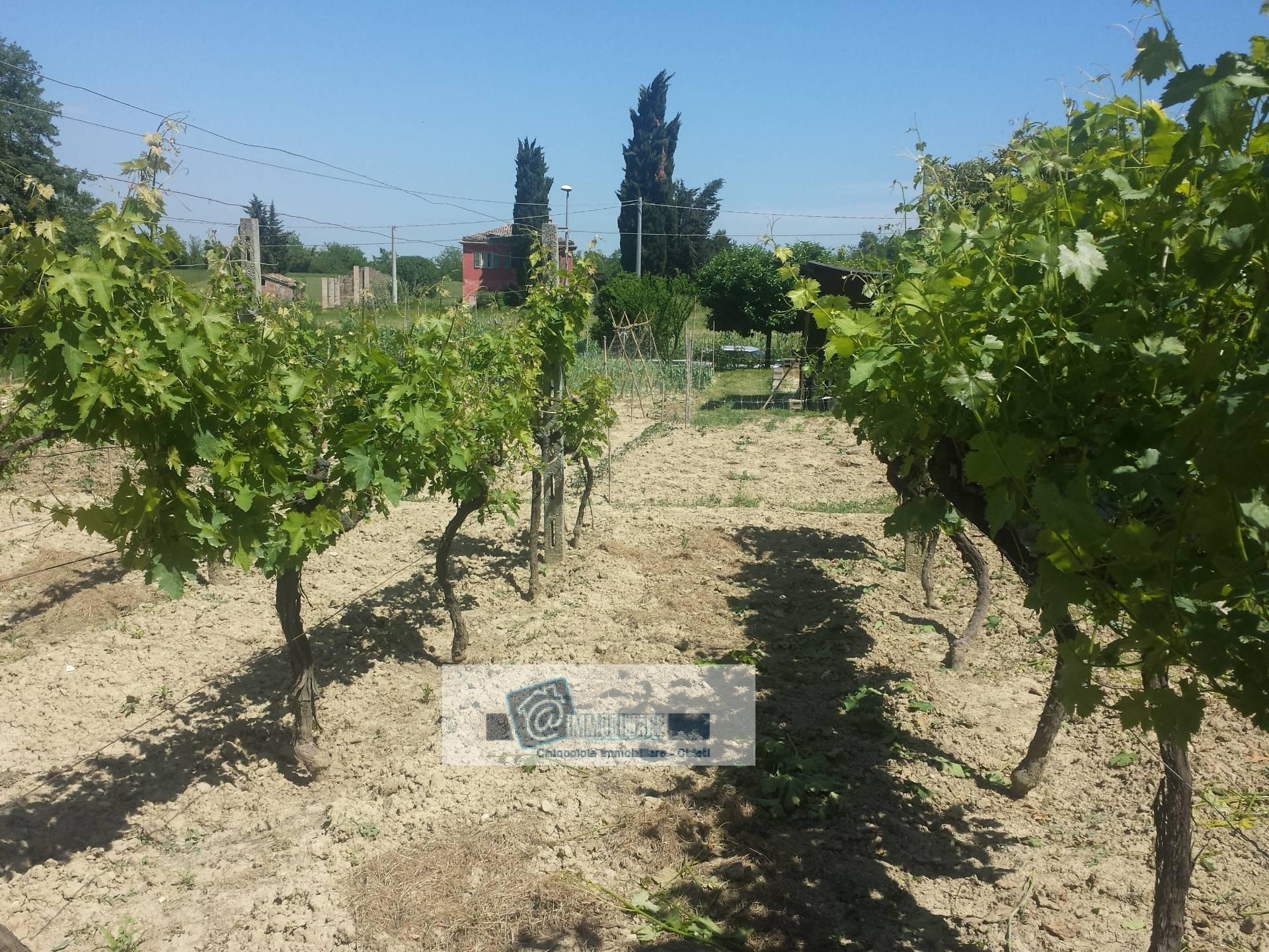 Terreno Edificabile Residenziale in vendita a Chieti, 9999 locali, zona Zona: Periferia, prezzo € 30.000 | CambioCasa.it