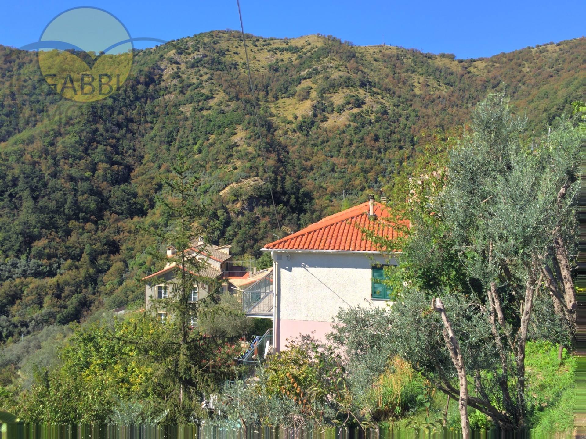 Appartamento in affitto a Avegno, 6 locali, zona Zona: Testana, prezzo € 450 | CambioCasa.it
