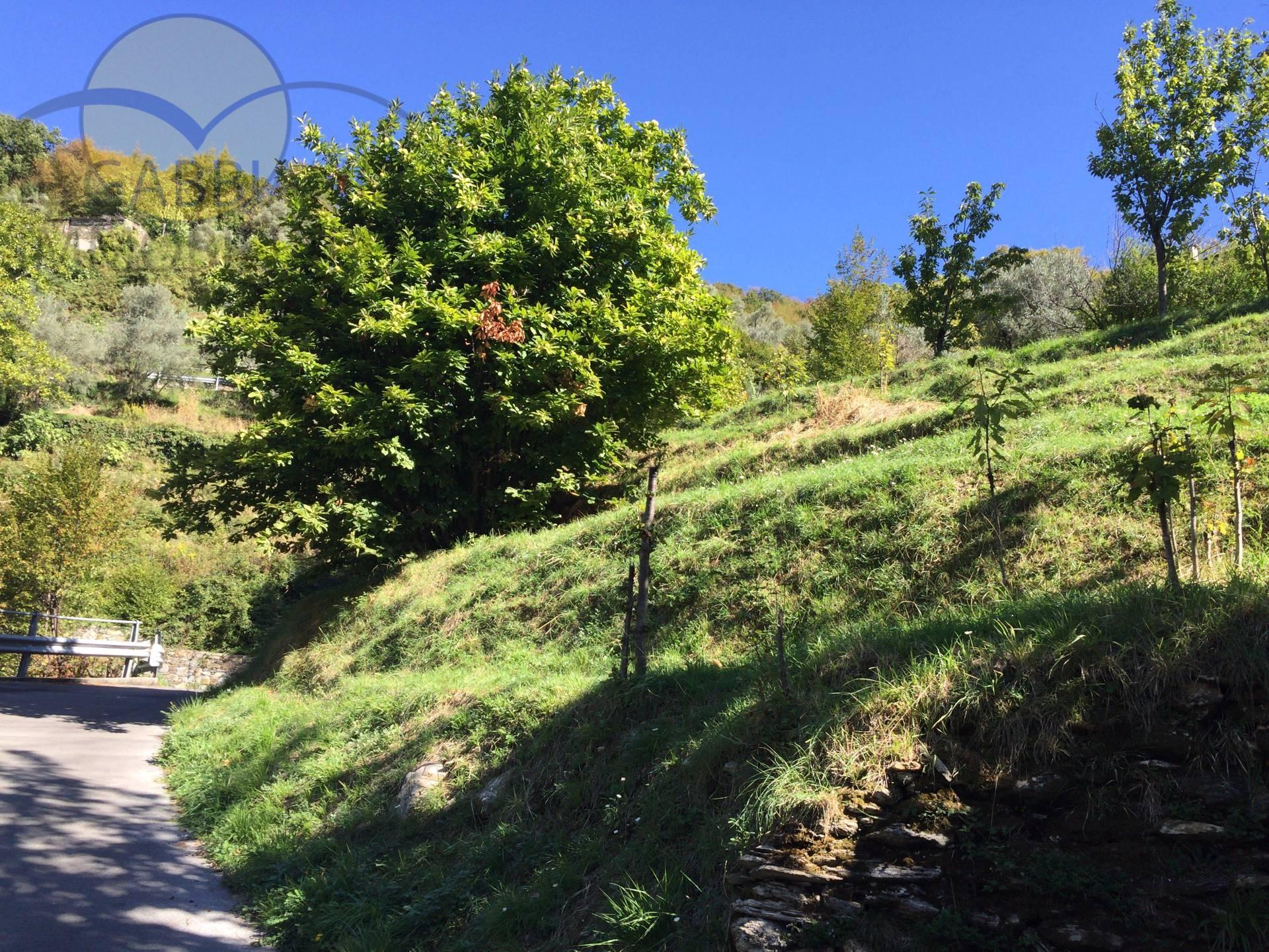 Terreno Edificabile Residenziale in vendita a Avegno, 9999 locali, zona Zona: Testana, prezzo € 95.000 | Cambio Casa.it