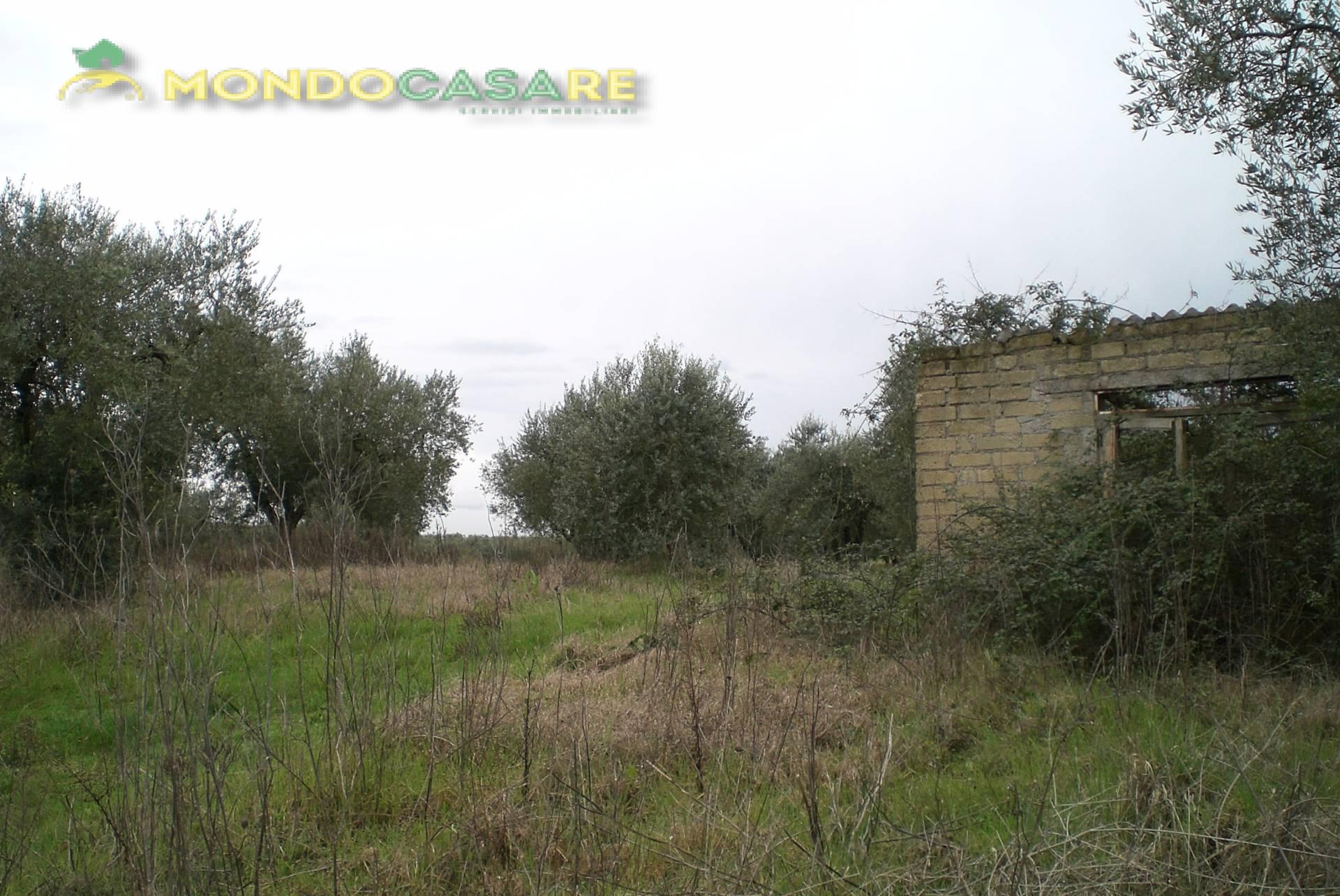 Terreno Agricolo in vendita a Montelibretti, 9999 locali, prezzo € 68.000 | Cambio Casa.it