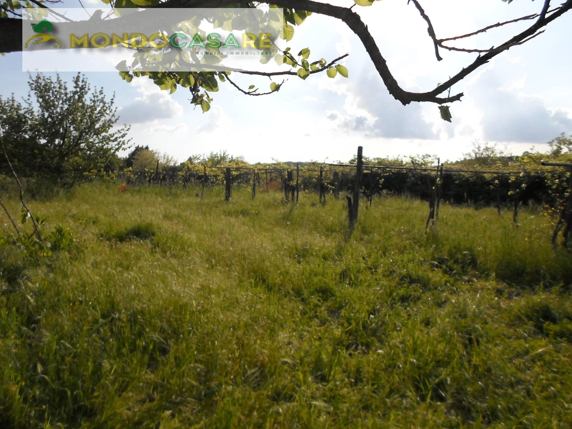 Terreno Agricolo in vendita a Marcellina, 9999 locali, prezzo € 47.000 | Cambio Casa.it