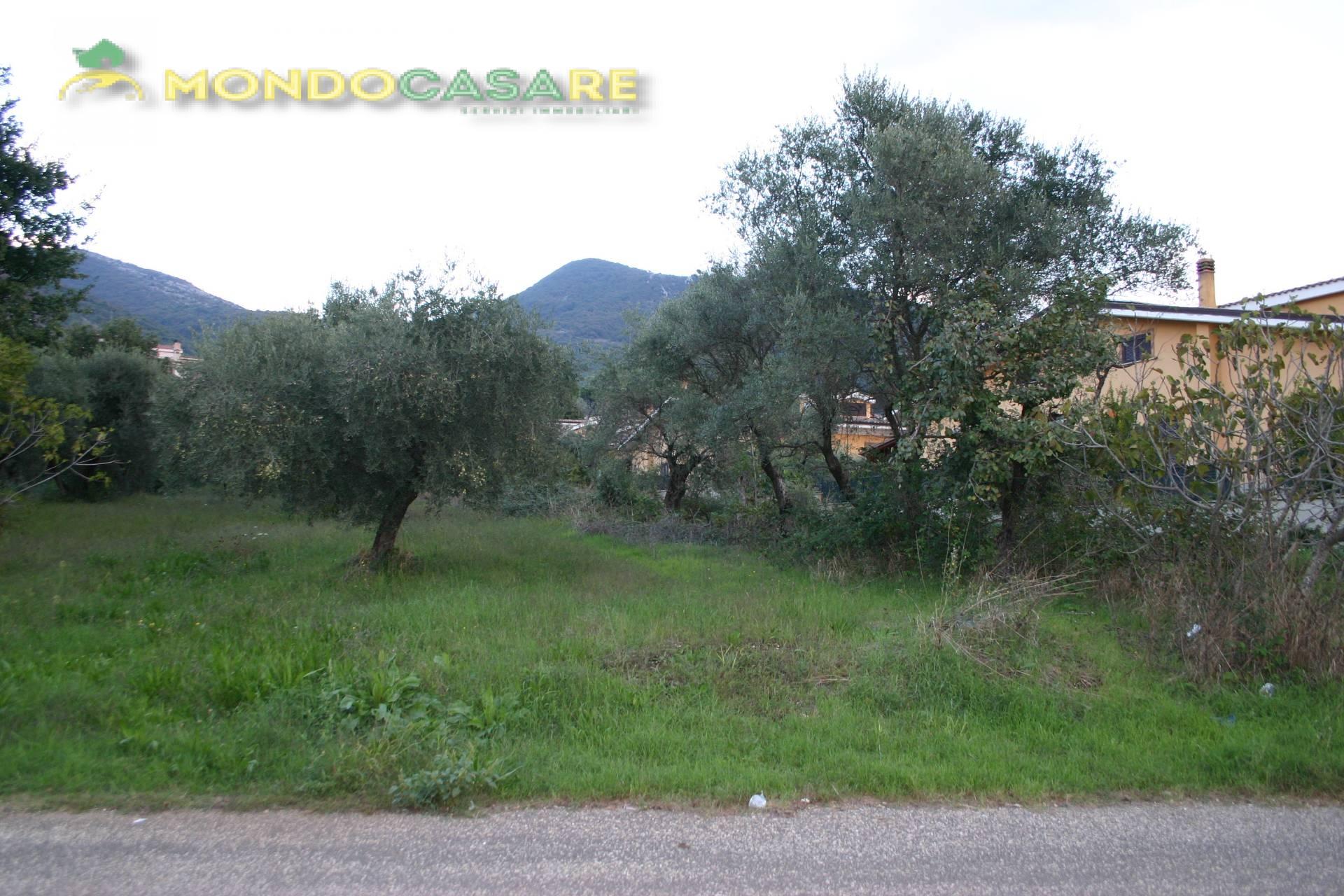 Terreno Edificabile Residenziale in vendita a Marcellina, 9999 locali, zona Località: ZonaMarcellinaA, prezzo € 105.000 | CambioCasa.it