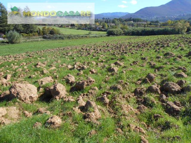 Terreno Agricolo in vendita a Palombara Sabina, 9999 locali, prezzo € 16.000   CambioCasa.it