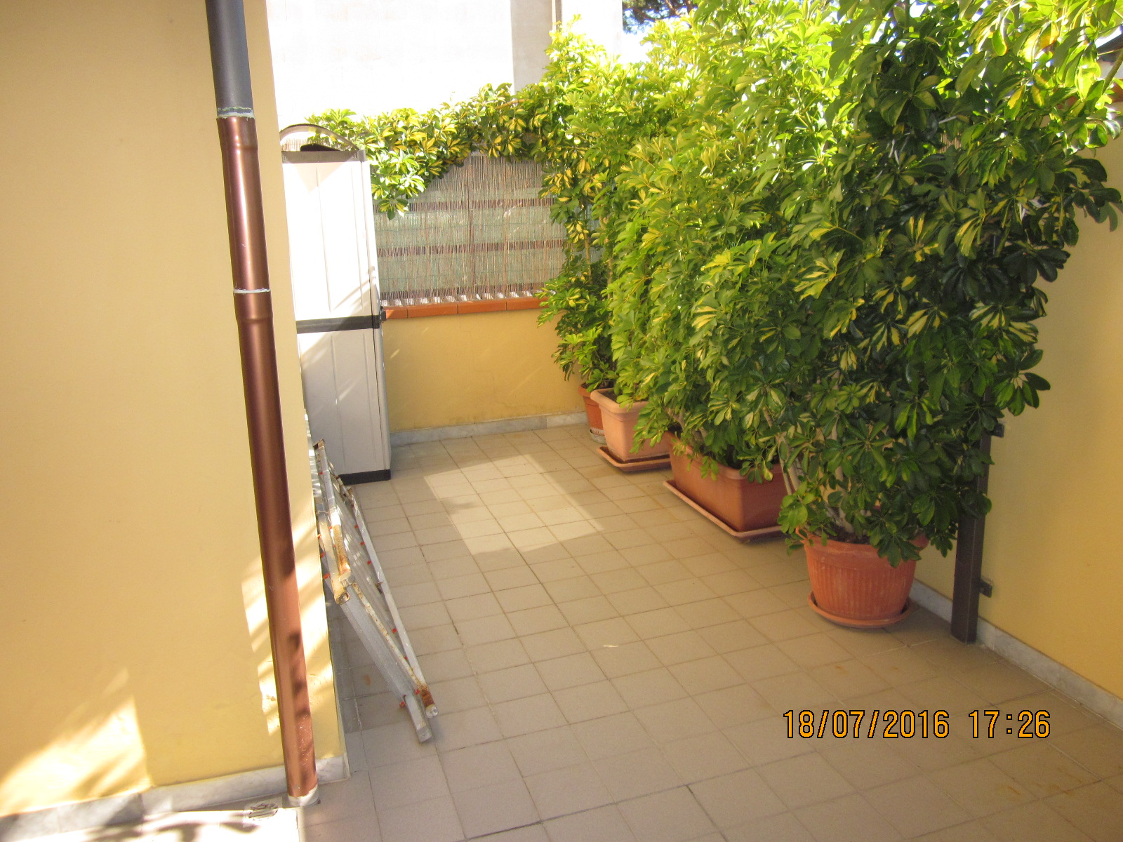 Bilocale Viareggio Via Virgilio 1