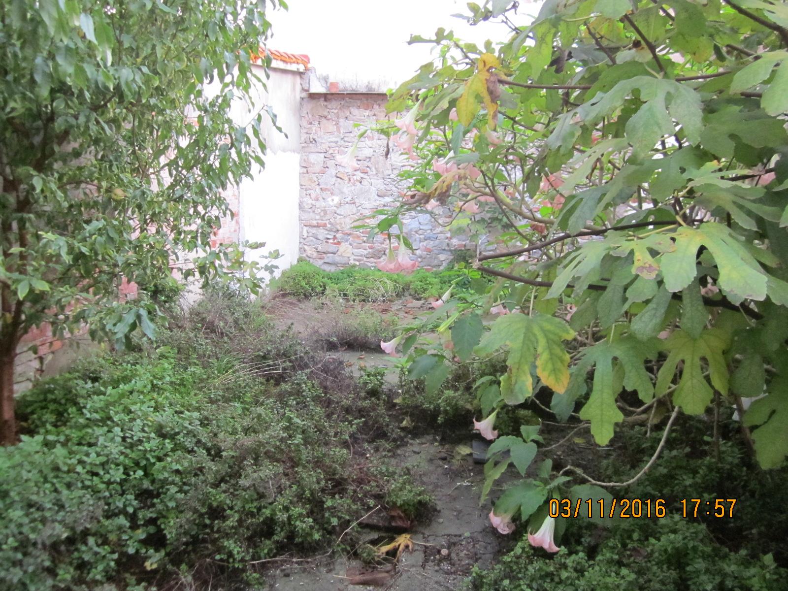 Soluzione Indipendente in vendita a Viareggio, 5 locali, zona Località: Centro, prezzo € 270.000   Cambio Casa.it
