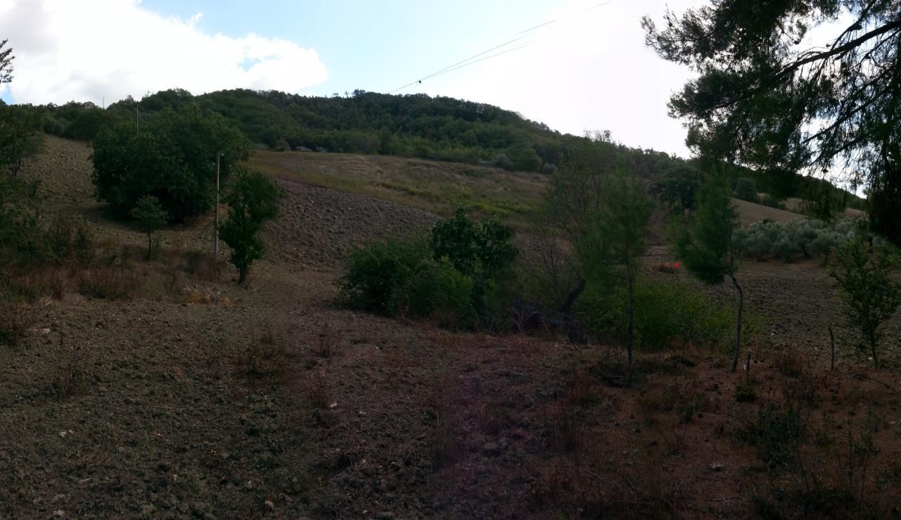 Terreno Agricolo in vendita a Tufara, 9999 locali, prezzo € 75.000 | Cambio Casa.it