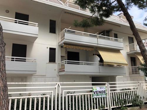 Vai alla scheda: Appartamento Vendita Martinsicuro