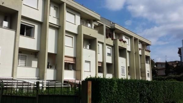 Bilocale Albano Laziale Via Abetonia 1