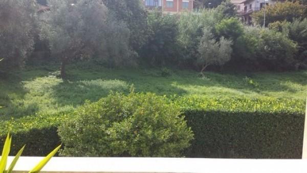 Bilocale Albano Laziale Via Abetonia 3