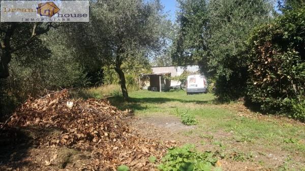 Rustico / Casale in vendita a Rocca di Papa, 2 locali, prezzo € 55.000 | Cambio Casa.it