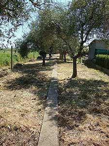 Soluzione Indipendente in vendita a Massarosa, 8 locali, zona Località: PianodelQuercione, prezzo € 240.000 | Cambio Casa.it