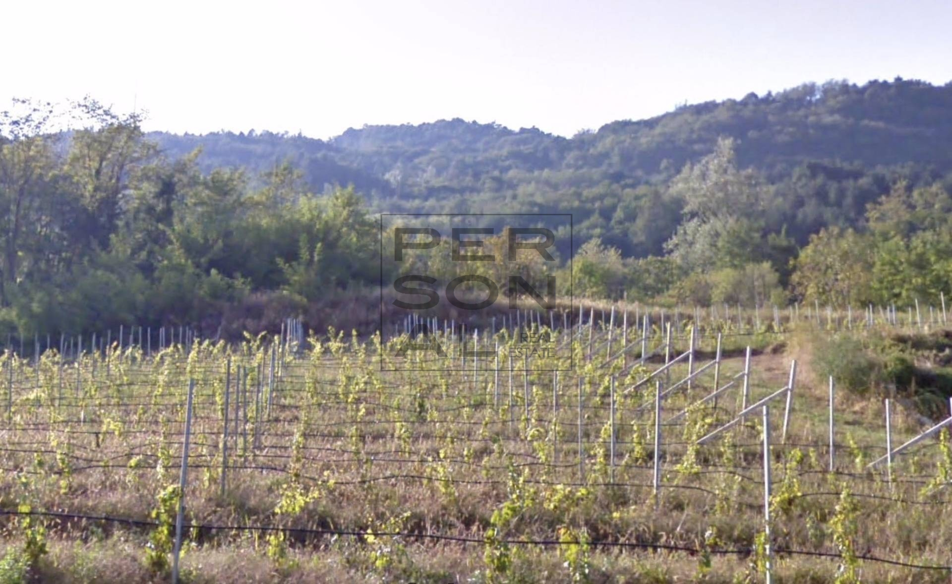 Terreno Agricolo in vendita a Cavedine, 9999 locali, prezzo € 50.000 | CambioCasa.it