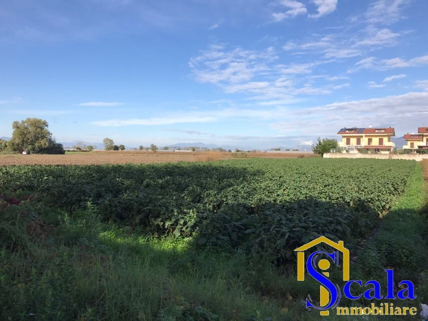 Terreno Edificabile Residenziale in Vendita a San Tammaro