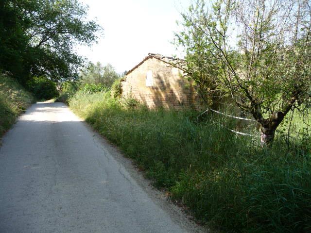 Rustico / Casale in Vendita a Monsampolo del Tronto