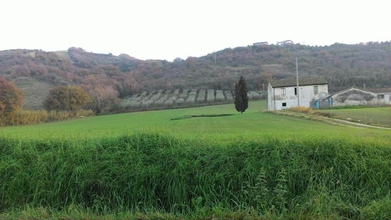 Rustico / Casale in vendita a Colonnella, 8 locali, prezzo € 350.000 | CambioCasa.it
