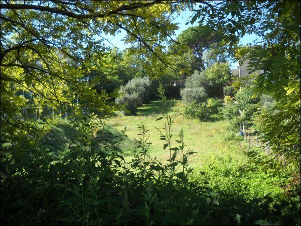 Terreno Edificabile Residenziale in vendita a Sant'Omero, 9999 locali, prezzo € 300.000 | Cambio Casa.it