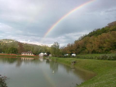 Attività / Licenza in affitto a Tortoreto, 9999 locali, zona Zona: Salino, prezzo € 500 | Cambio Casa.it