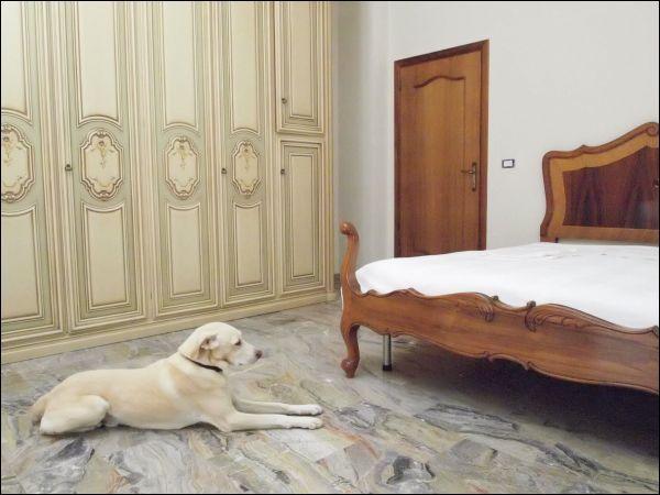 Villa in vendita a Spinetoli, 9999 locali, zona Località: residenziale, prezzo € 500.000 | Cambio Casa.it