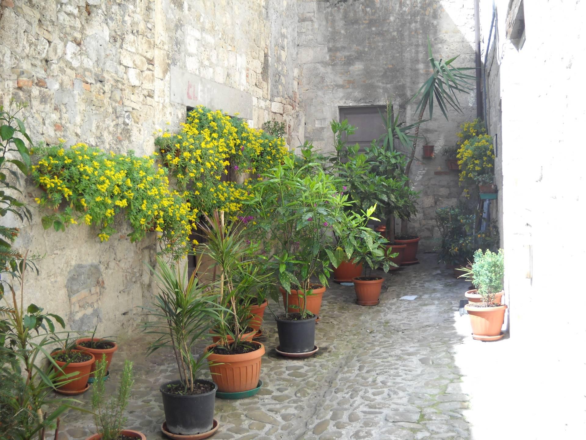 Soluzione Indipendente in affitto a Ascoli Piceno, 6 locali, zona Località: CentroStorico, prezzo € 500 | Cambio Casa.it