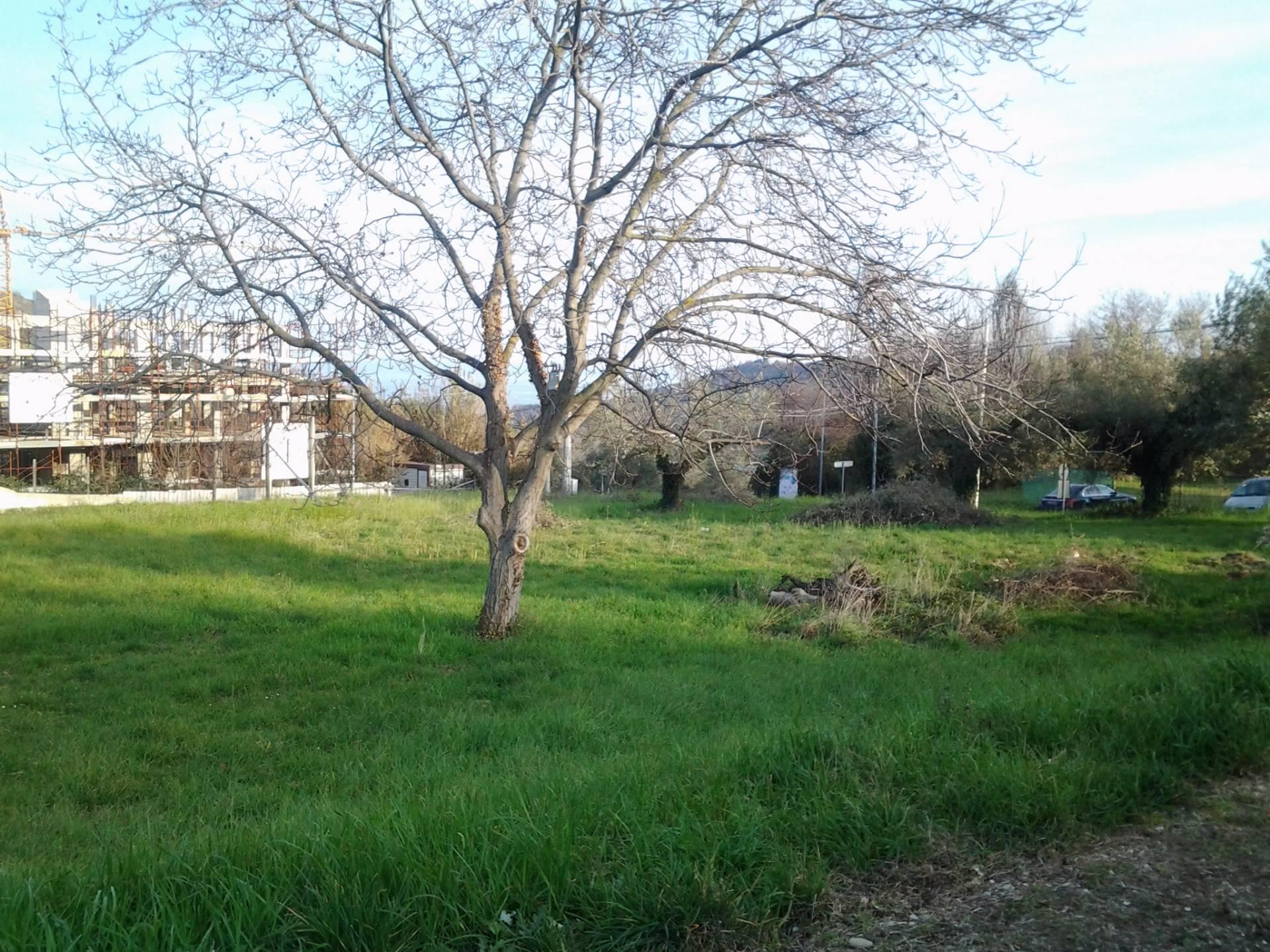 Terreno Edificabile Residenziale in vendita a Colonnella, 9999 locali, prezzo € 60.000 | Cambio Casa.it