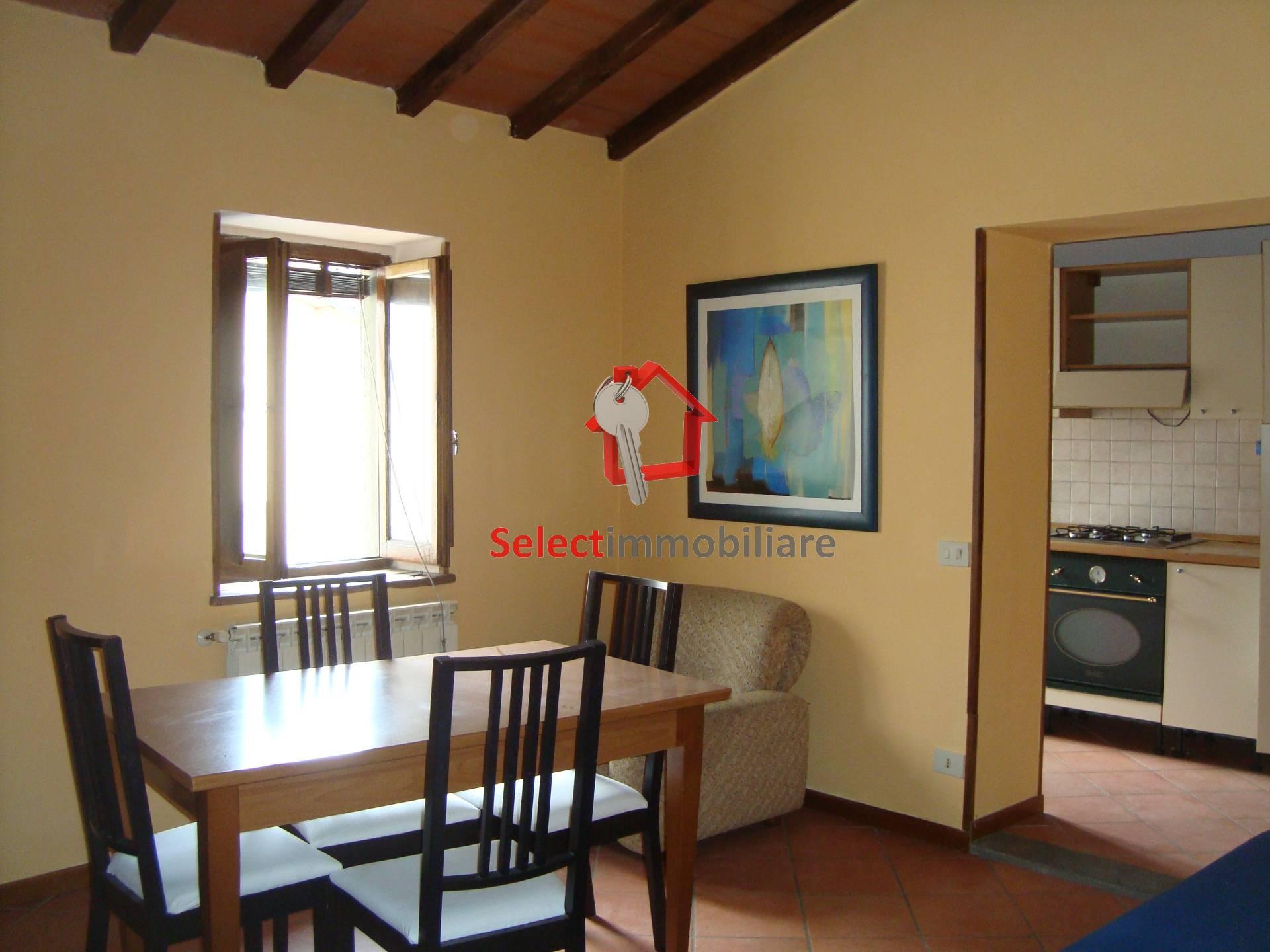 Appartamento in affitto a Barga, 2 locali, zona Località: FornacidiBarga, prezzo € 450 | CambioCasa.it