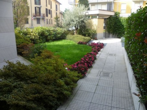 Bilocale Saronno Via Molino 6