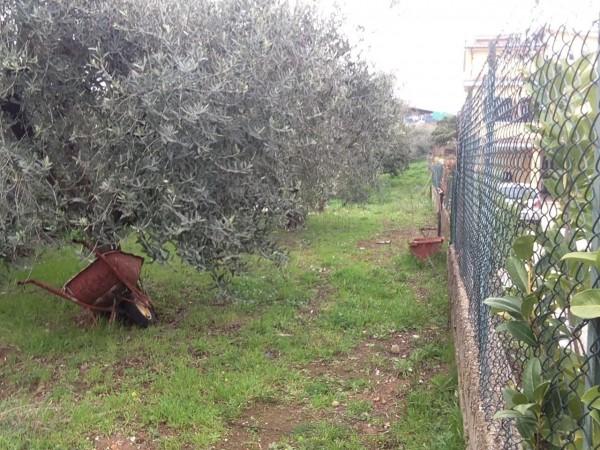 Bilocale Albano Laziale Via Degli Ulivi 4