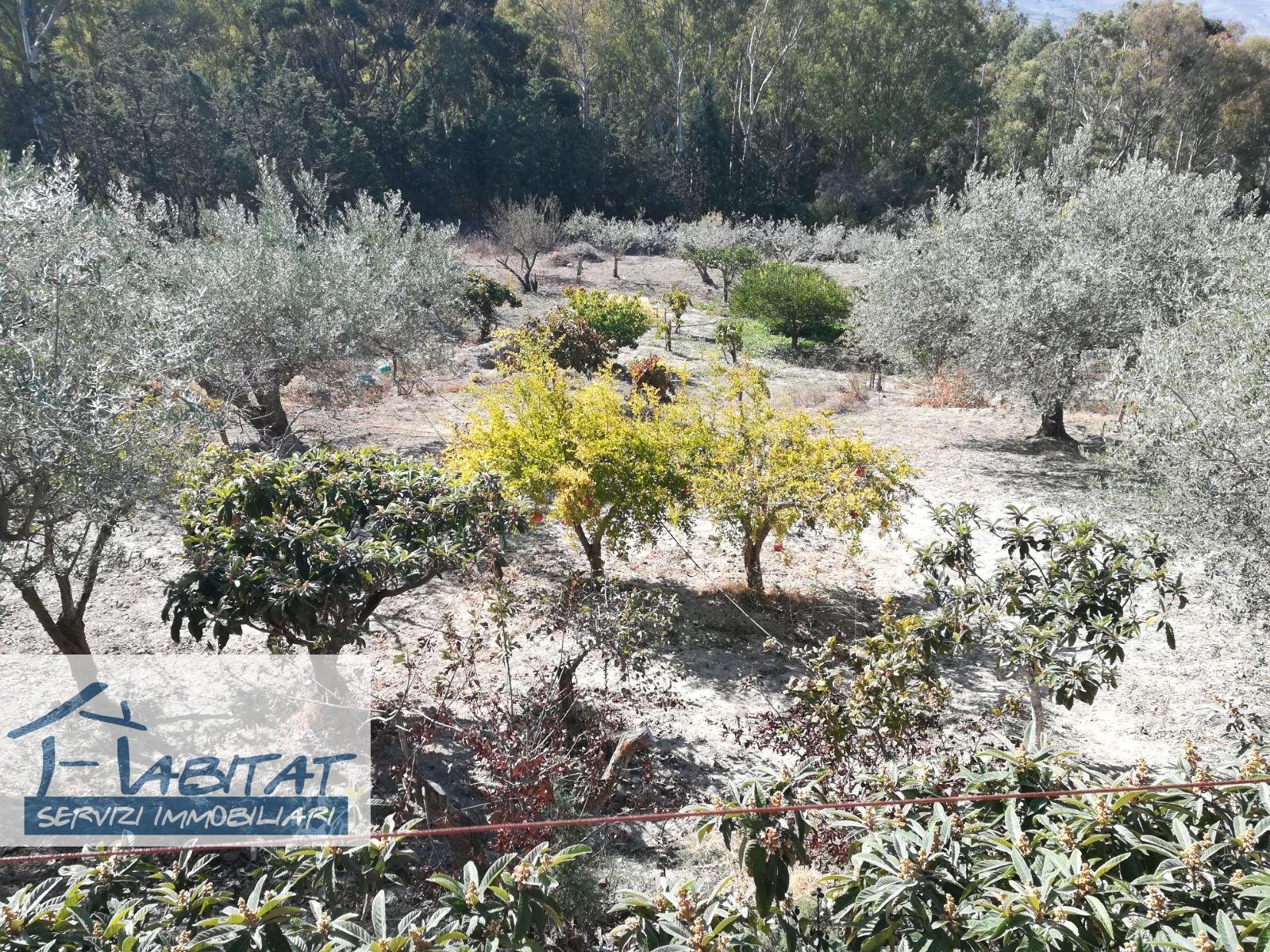Villa in affitto a Agrigento, 3 locali, zona Località: Quadrivio, prezzo € 300 | CambioCasa.it