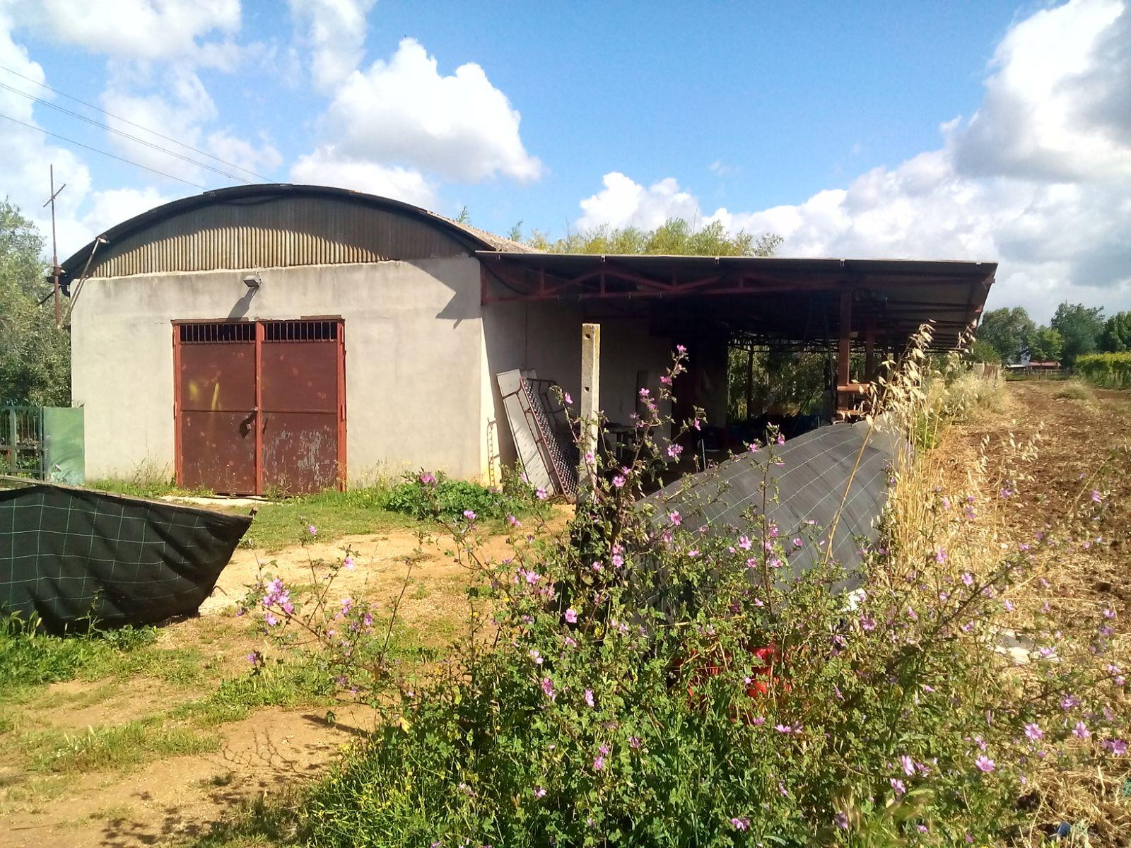 Terreno Agricolo in vendita a Velletri, 9999 locali, prezzo € 250.000   Cambio Casa.it
