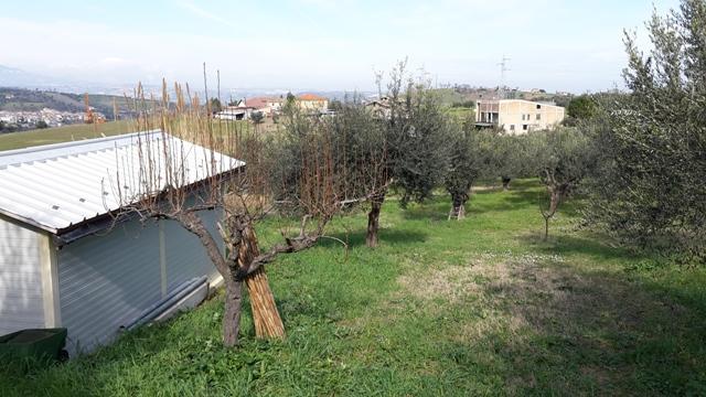 Terreno Agricolo in vendita a Manoppello, 9999 locali, zona Zona: Cappuccini, prezzo € 22.000 | Cambio Casa.it