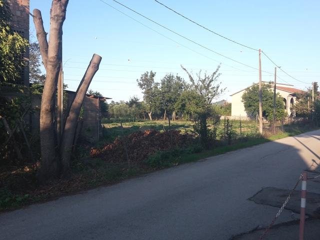 Terreno Edificabile Residenziale in Vendita a Cepagatti