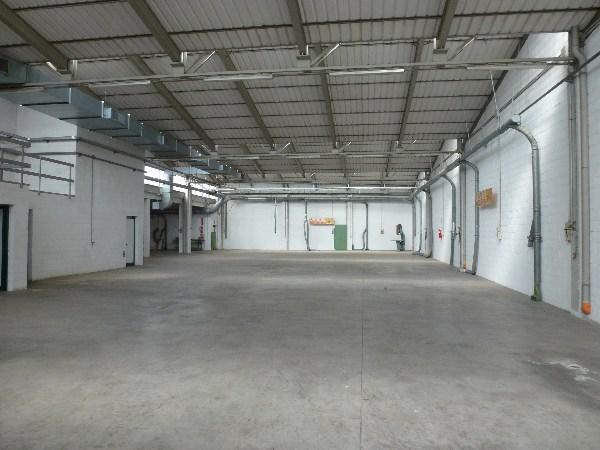 Affitto capannone/magazzino Pordenone