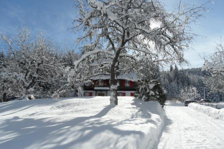 Villa in vendita a Tarvisio, 13 locali, zona Località: RutteGrande, Trattative riservate | Cambio Casa.it