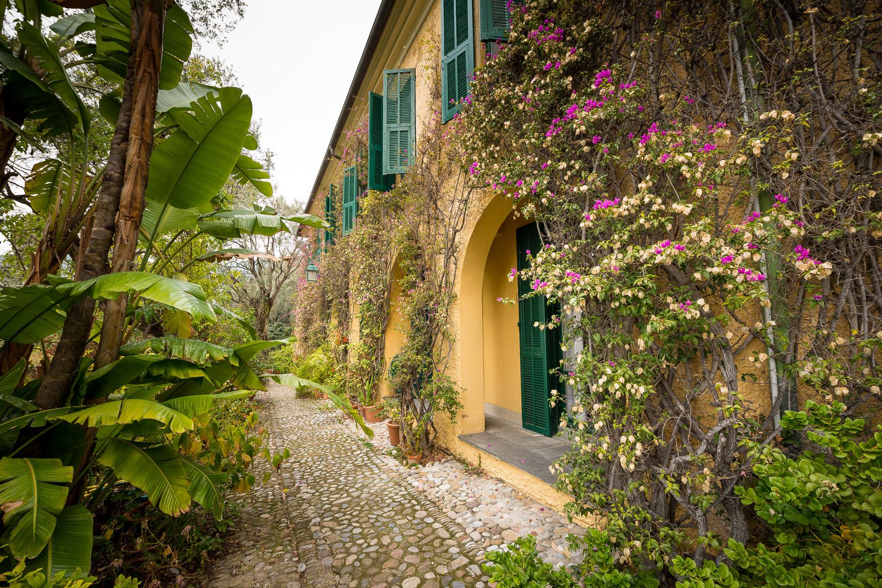 Appartamento in Vendita a Ventimiglia: 5 locali, 250 mq - Foto 4