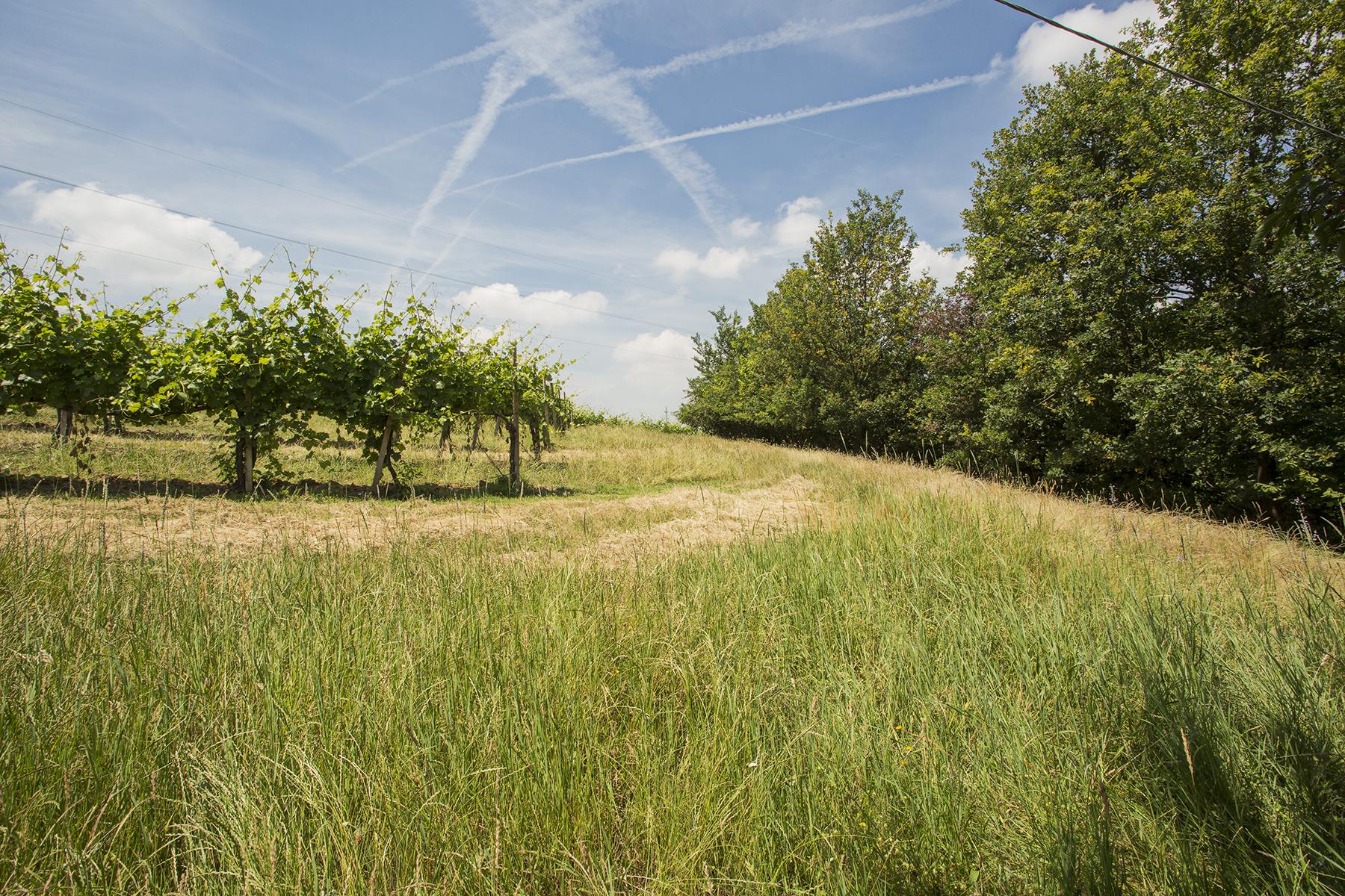 Rustico in Vendita a Novi Ligure: 5 locali, 300 mq - Foto 7