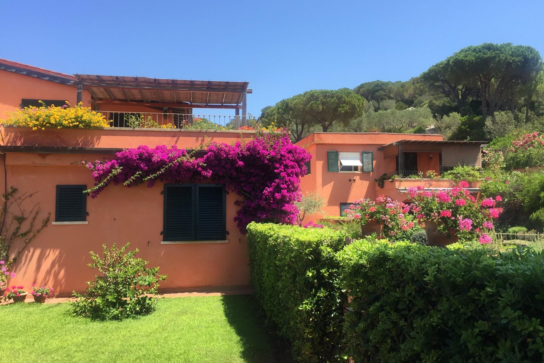 Casa indipendente in Vendita a Capoliveri: 5 locali, 190 mq - Foto 4