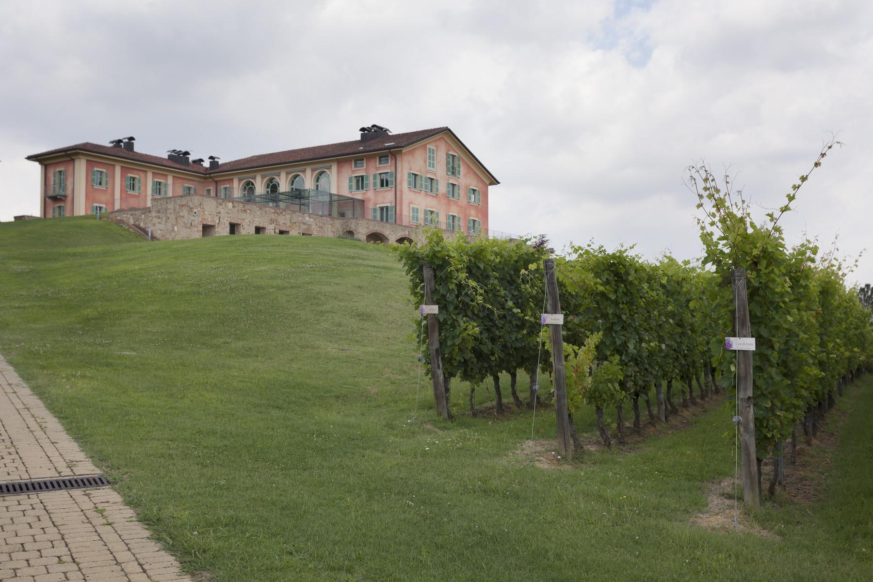 Villa in Vendita a Fubine: 5 locali, 2600 mq