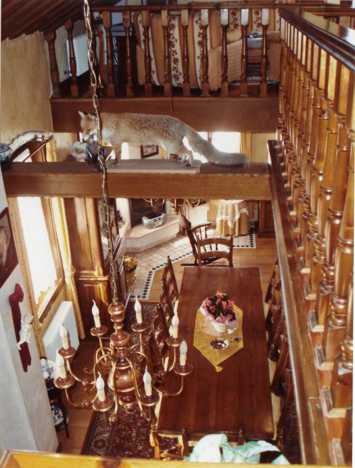 Villa in vendita a Asiago, 4 locali, Trattative riservate | Cambio Casa.it