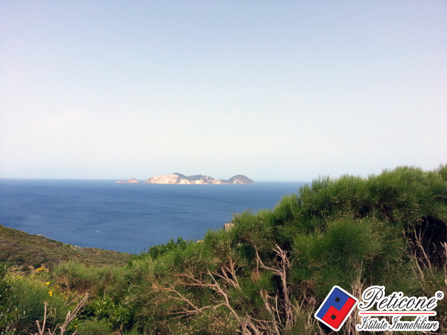 Bilocale Ponza Via Guarini 10